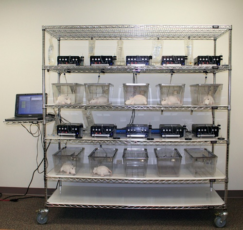 ABS Rack System
