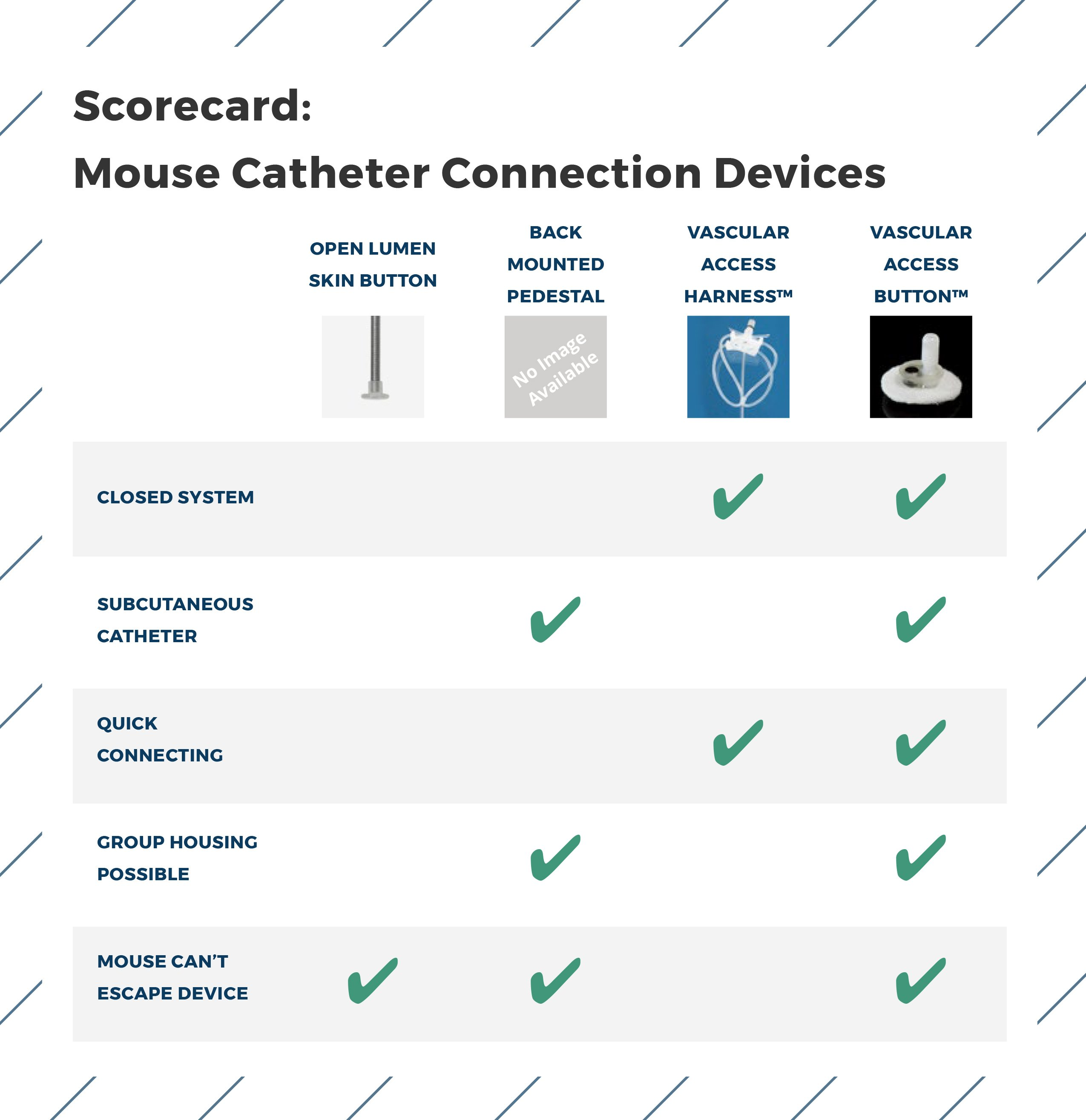Mouse Catheter Scorecard