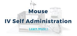 Mouse IV Self Administration